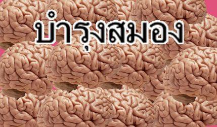บำรุงสมอง