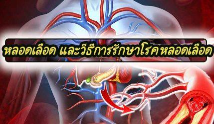 หลอดเลือด และวีธีการรักษาโรคหลอดเลือด