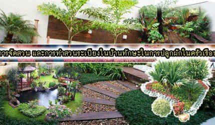 การจัดสวน และการทำสวนระเบียงในบ้านทักษะในการปลูกผักในครัวเรือน